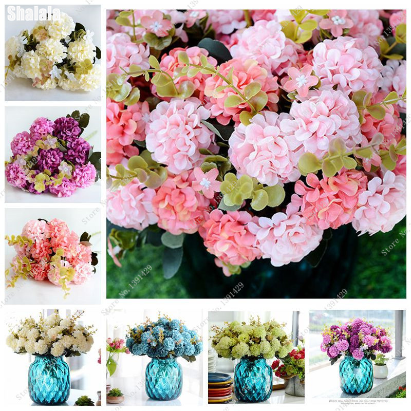 √Fragrant Flower Hydrangea Bouquet Seed,Bonsai Flower Seeds, Rare ...