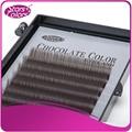 Hot vender Extensões do chicote cílios falsos cílios individuais cílios grosso cor de chocolate, natureza eye lashes