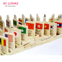 100pcs/set Wooden National Flag Domino Children Puzzle Funny Domino Game Learning Flags World Countries Educational Toys
