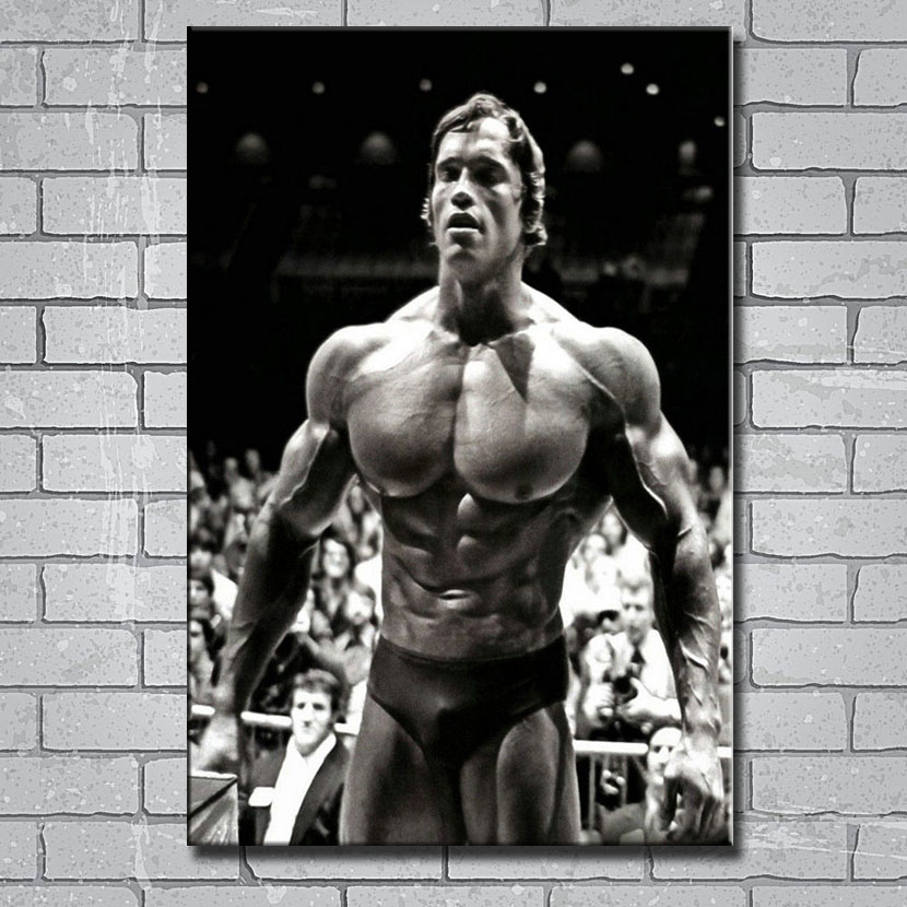 Arnold Schwarzenegger Motivation Gym Art Silk Poster 8x12inch