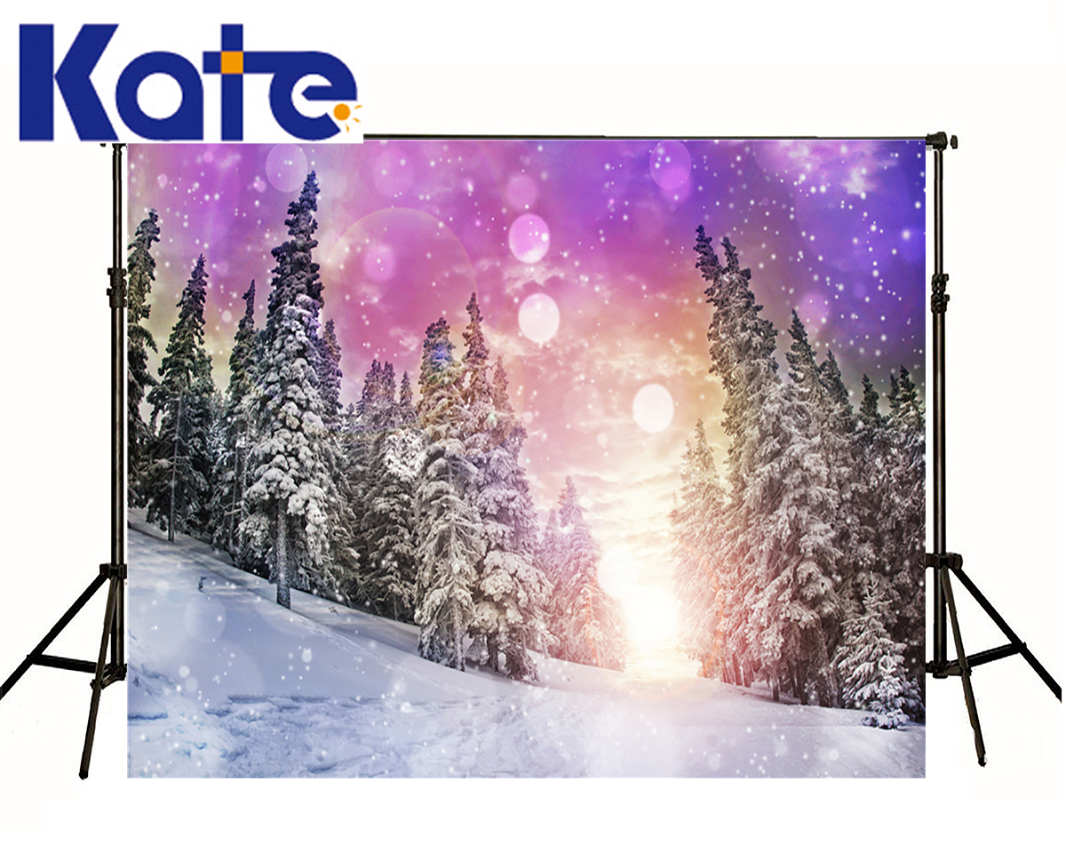 Kate Winter Backdrops Photography Dream Forest Spot Scenery Photography Background Snow Fall World Backgrounds For Photo Studio  kate photography backdrop winter snow tree castle scenery photography background lighting spot dream backdrops studio