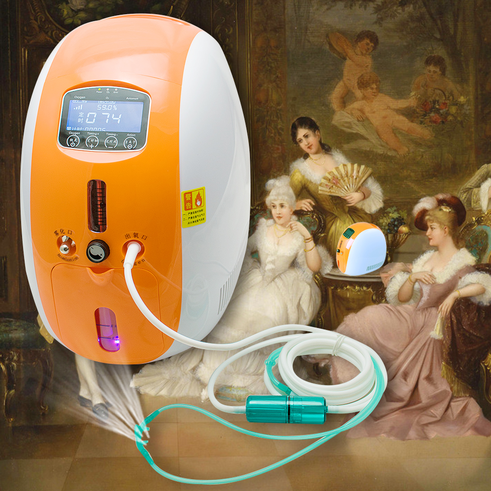 2017 New 2L Portable Oxygen Concentrator Full Intelligent Home Oxygen Concentrator Generator with nebulizer work compact Silent