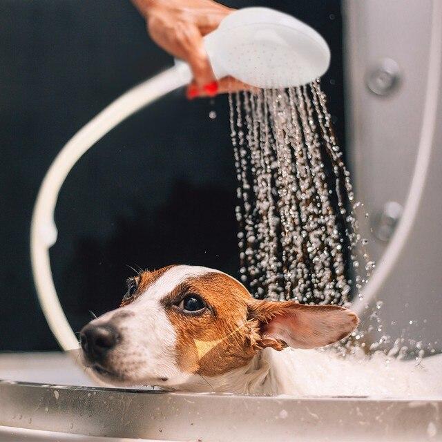 Nuevo Pet perro gato ducha cabeza grifo multifuncional espray colador manguera fregadero lavado pelo mascotas baño de agua cabezales
