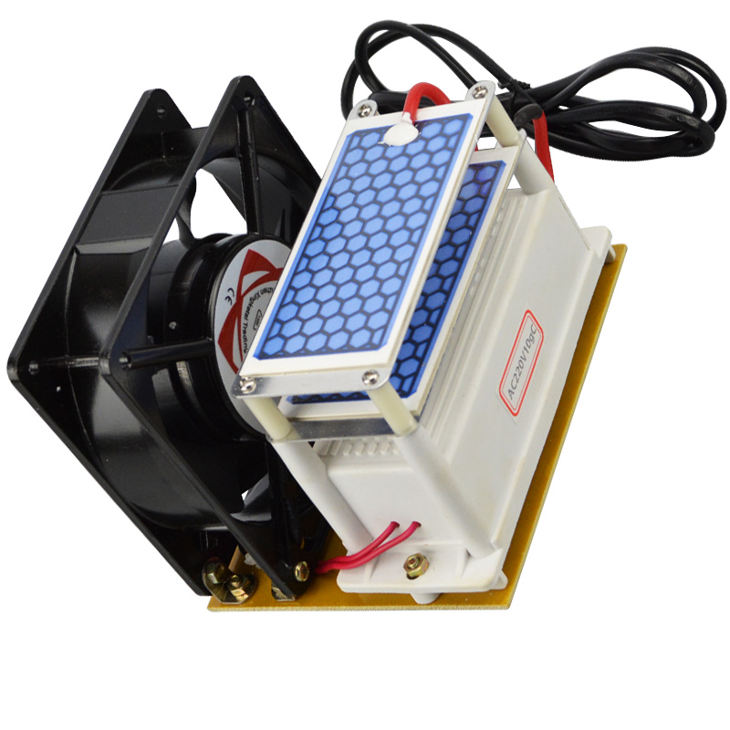 New Portable Ozone Machine 220v 10g Double Ceramic Plate Ozone Generator Ozone Sterilizer with Fan Heat Dissipation Odor Filter