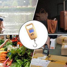 Portable Double Precision Digital Fishing Scale