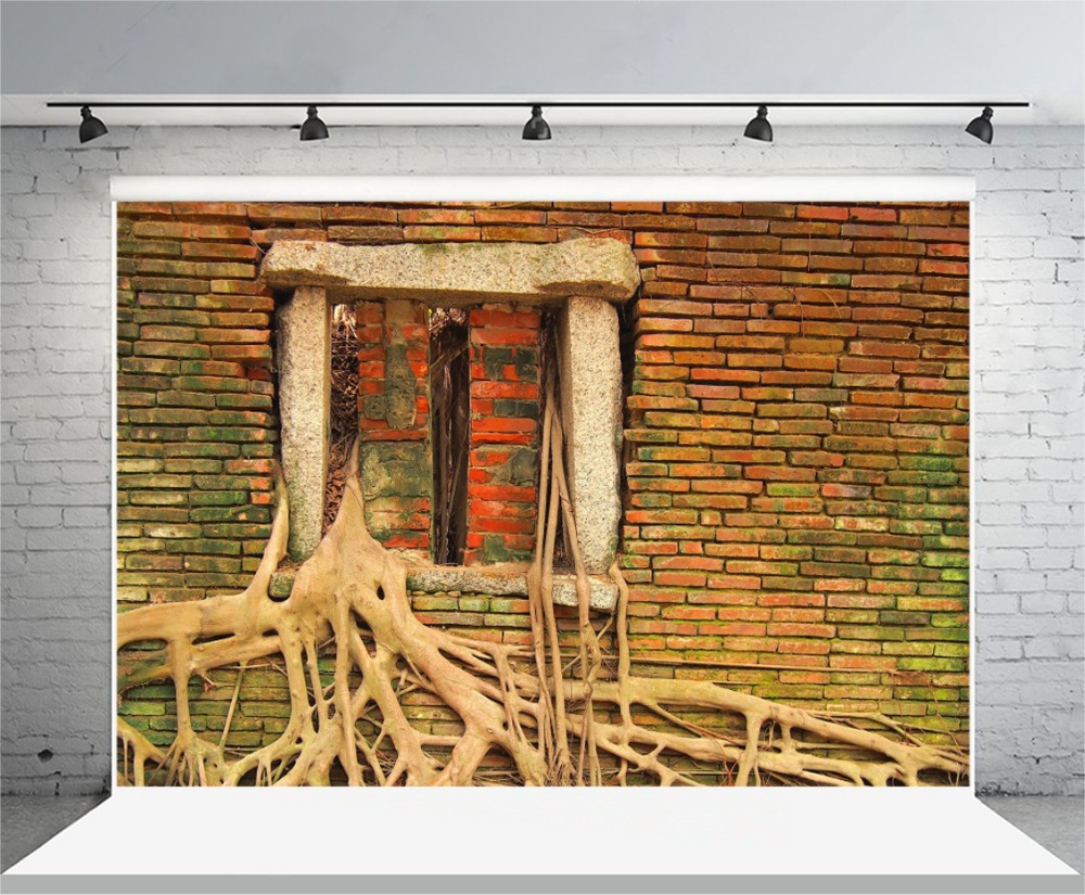Laeacco Spread Tree Root Red Brick Wall Window Landscape
