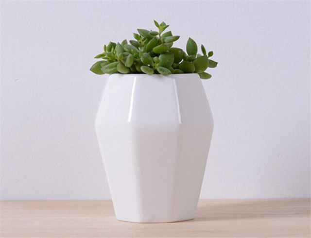 Simple White Ceramic Octagon Shape Flower Pot Table Small Succulents Flowerpot Green Planter Home Living