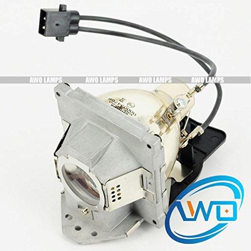 AWO 5J. J2D05.011 lampe de remplacement d'origine pour projecteur BenQ SP920P (lampe 2)