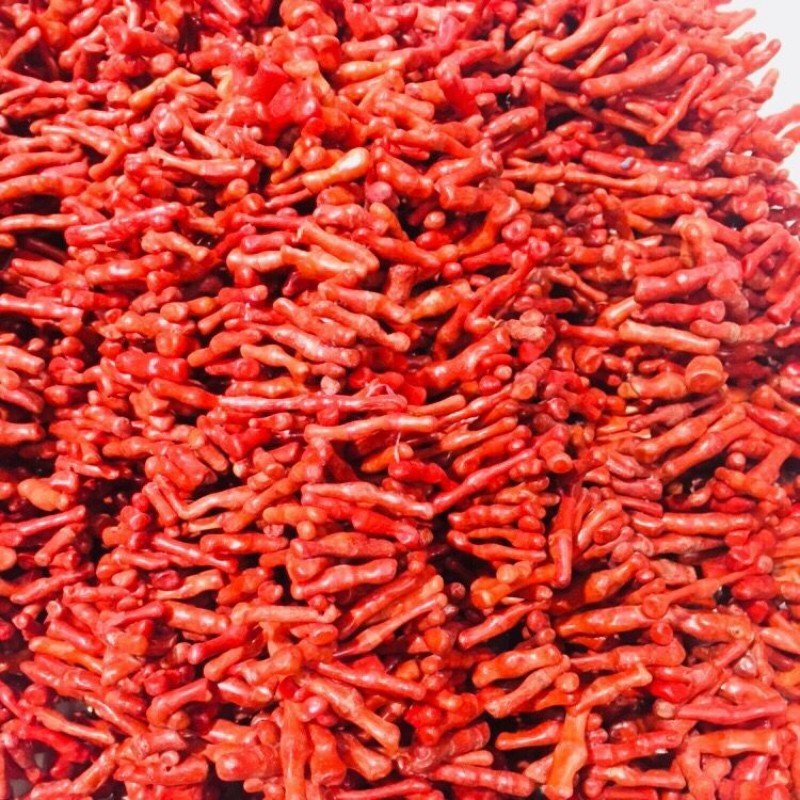 JYX Wholesale 18-60mm Irregular Red Coral Beads Loose String Strands DIY Handmade Gemstone 15.5