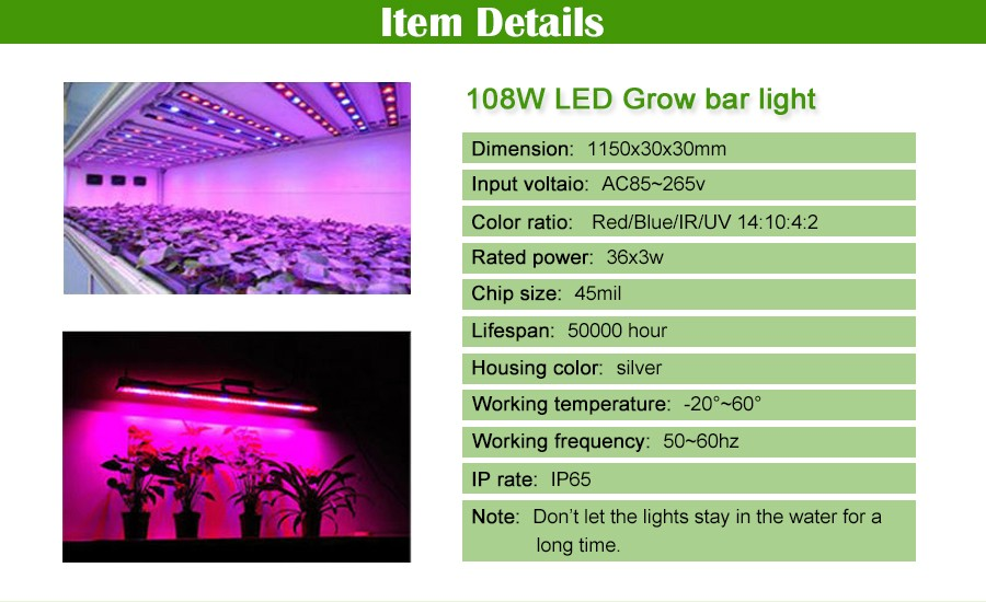 China led grow Suppliers