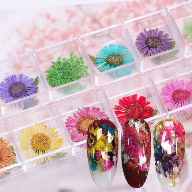 12 Designs 3d Daisy Nail Dry Flower Petal Natural Floral Leaves Nail