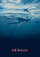 5D DIY Diamante Pintura diamante Bordado Mosaico Cartão Animal Dos Desenhos Animados Golfinho do Ponto da Cruz