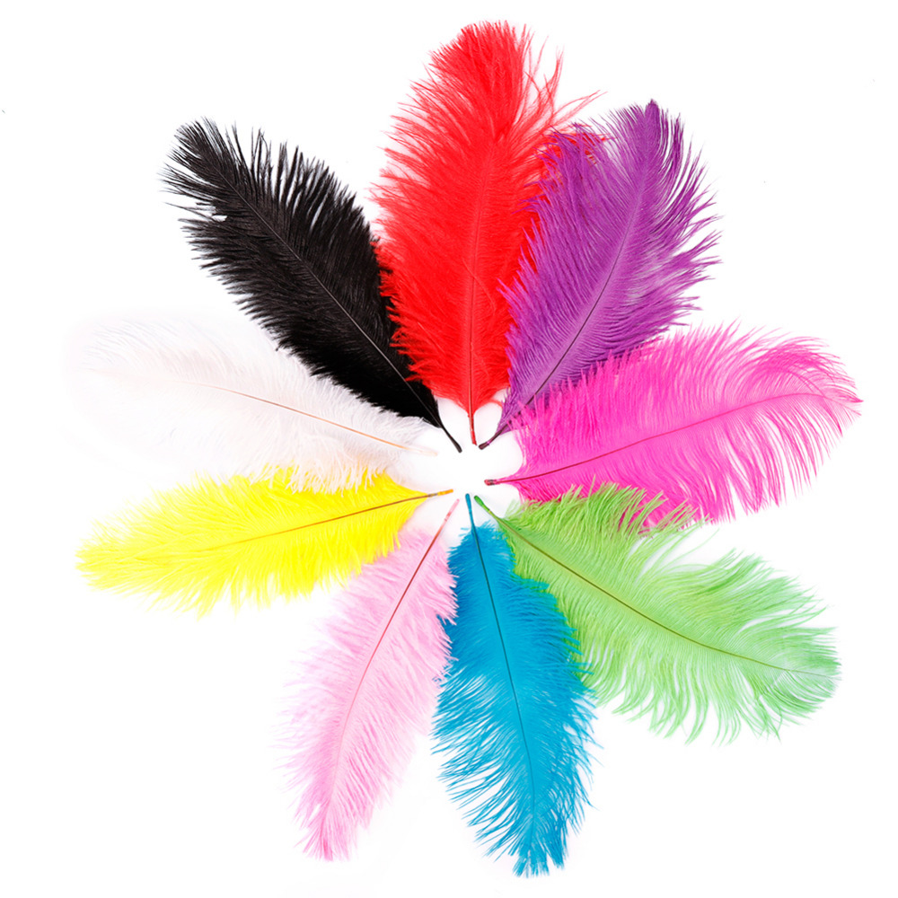 10Pcs/Pack Natural Colors Ostrich Feathers For Weddings