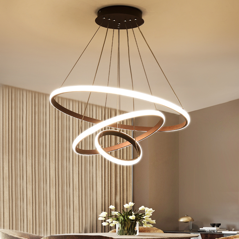 Modern Led Chandeliers Light Circle Rings 20 40 60 80cm For Living Room BedroomAcrylic Lampara De