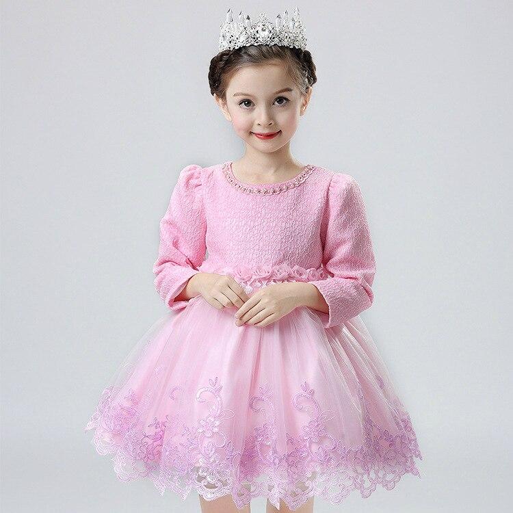 Coréenne princesse filles automne enfants à manches longues dentelle broderie robe avec velours enfants vêtements mince épais 3 couleur - 4