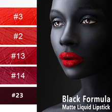 цена на Free private label black formula matte liquid lipstick gloss can do dropship blind dropshipping with your brand on