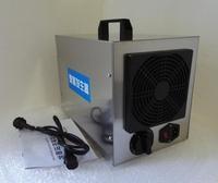 10g ceramic plate portable ozone generator machine for car air purifier home air cleaner Disinfection 110v 220v 12v 24v