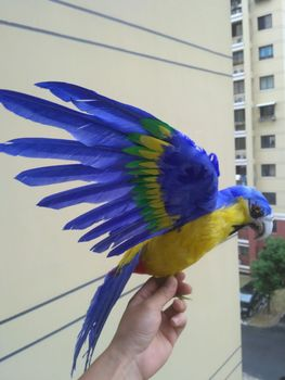 big new simulation blue&yellow parrot toy foam&furs cute wings bird model gift about 60x45cm 1611