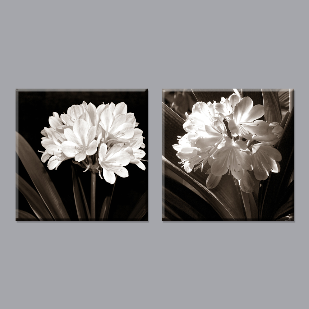Hot Sell 2 Piece Free Shipping Modern Black And White Flowers