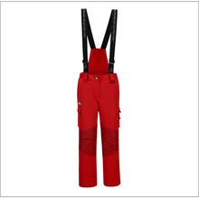Skiing Bib Pant Cotton Winter Outdoor Trousers Female 2017 HighExperience Ski Pants Women Snowboard Pants Outdoor Snow Clothing