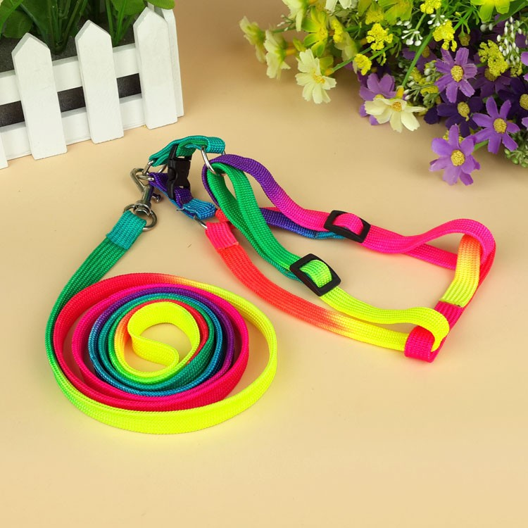 New lovely colorful rainbow color cat dog accessories walking harness leash for pet multicolor pets collars leather pet products