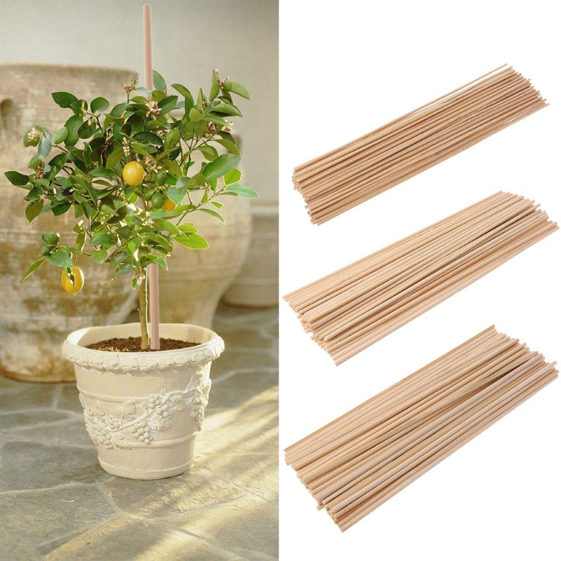 50pcs/set Wooden Plant Grow Support Bamboo Plant Sticks 30cm Garden Cane Plants Flower Support Stick Canes 3 Sizes