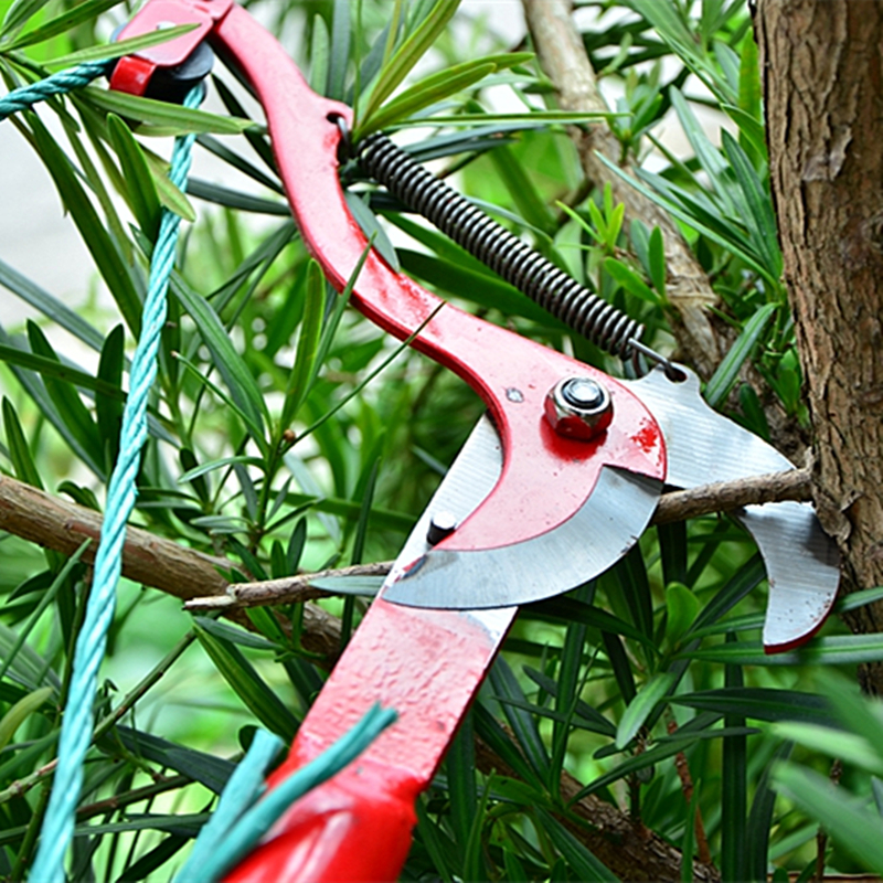 tijeras de podar de gran altitud podadoras de árboles ramas de corte - Herramientas manuales - foto 2