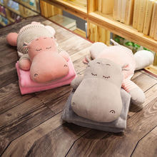 Cartoon hippo warm hand pillow quilt dual purpose cushion car office three in one air conditioning blanket nap