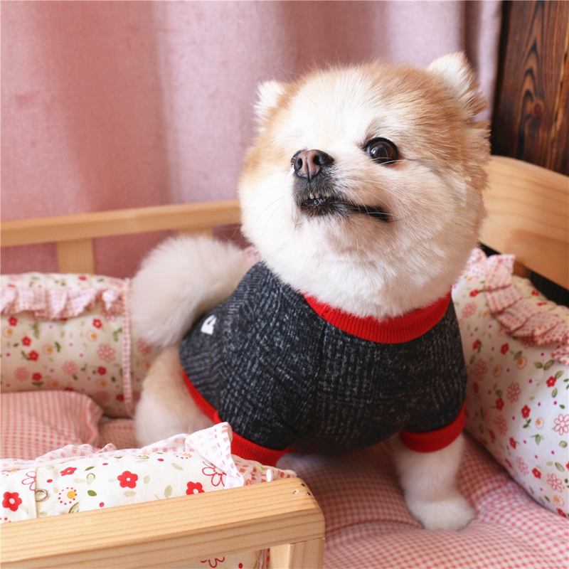 Popular Pet Puppy Clothes For Small Dog Funny Love Style Dog Coat Chihuahua Autumn Winter Dog Coat Jacket Soft Warm Pet Clothes in Dog Sets from Home Garden