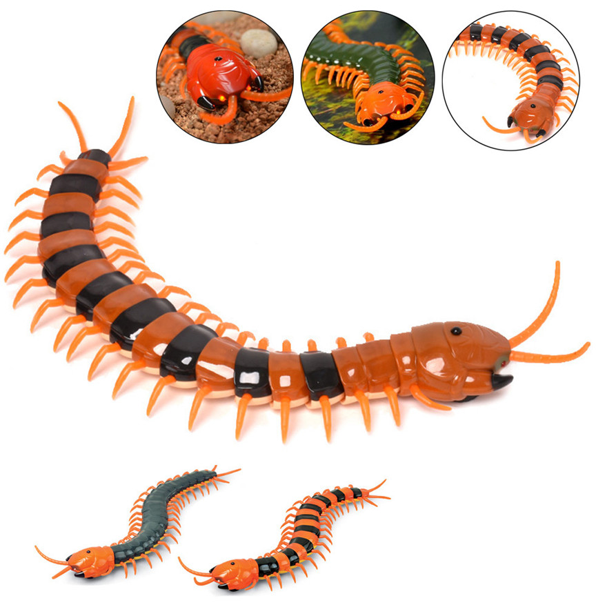 High Quality New Scary R/C Simulation Centipede With Remote Controller Kids Toy Gift Toys Wholesale Free Shipping ...
