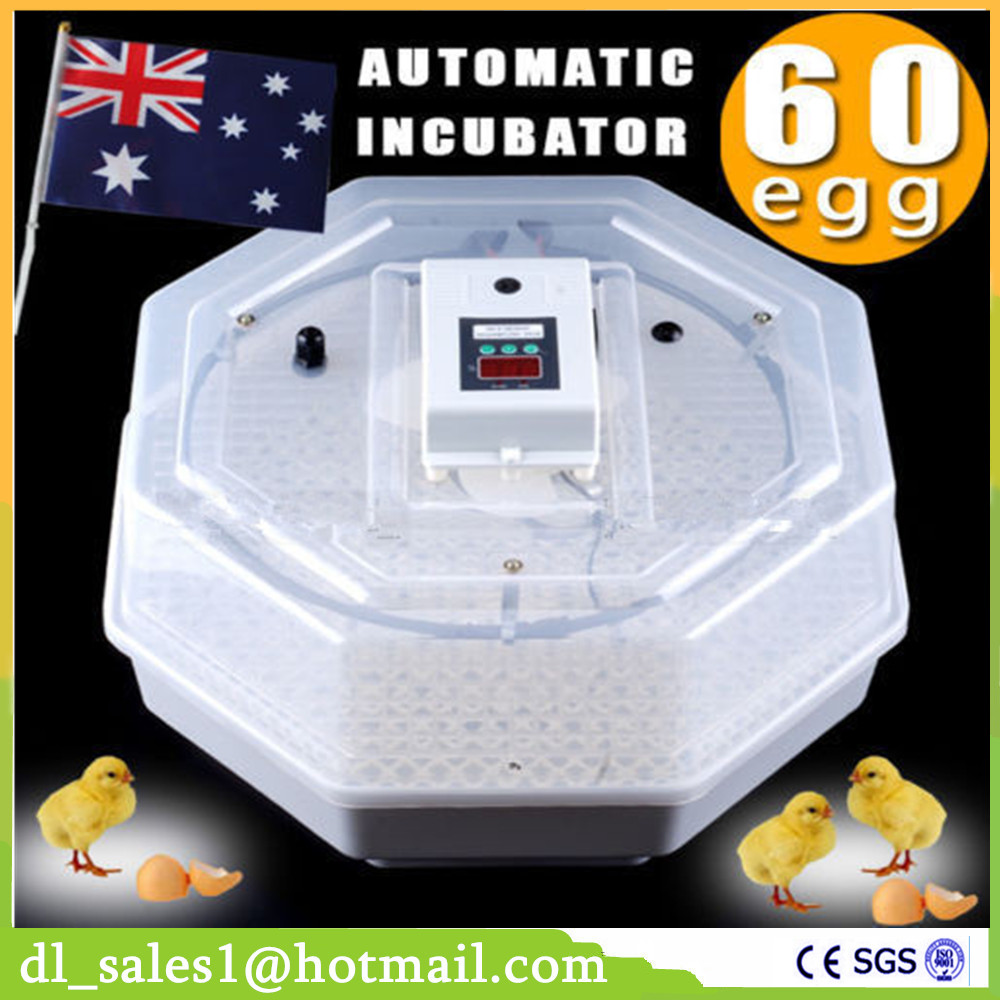 Home Use Cheap Poultry Incubators Hold 60 Egg Digital Mini Incubator Poultry Chicken Duck Hatching Tool JN5-60 top sale household farm egg incubators 24 egg incubators for led display turner for sale