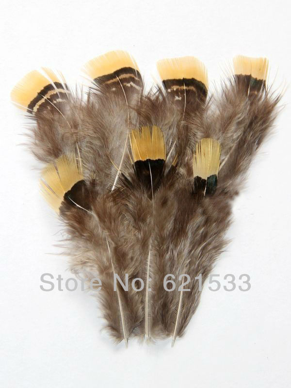 200Pcs Lot 5 7cm Loose Beautiful Rare Lady Amherst Pheasant Plumage Feathers with Bright Yellow Tips in Feather from Home Garden