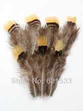 200Pcs/Lot 4-7cm Loose Beautiful Rare Lady Amherst Pheasant Plumage Feathers with Bright Yellow Tips