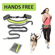 Coleira de cinto elástica reflexiva para corrida, pet, cão, gato, jogging, cintura acolchoada, faixa perfeita para caminhada, treinamento, conjunto, mãos livres