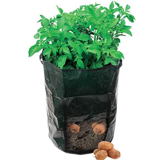 Kartoffeln pflanzkissen pflanzentöpfe tomaten gemüse balkon plastikblumentöpfe.jpg 640x640.jpg