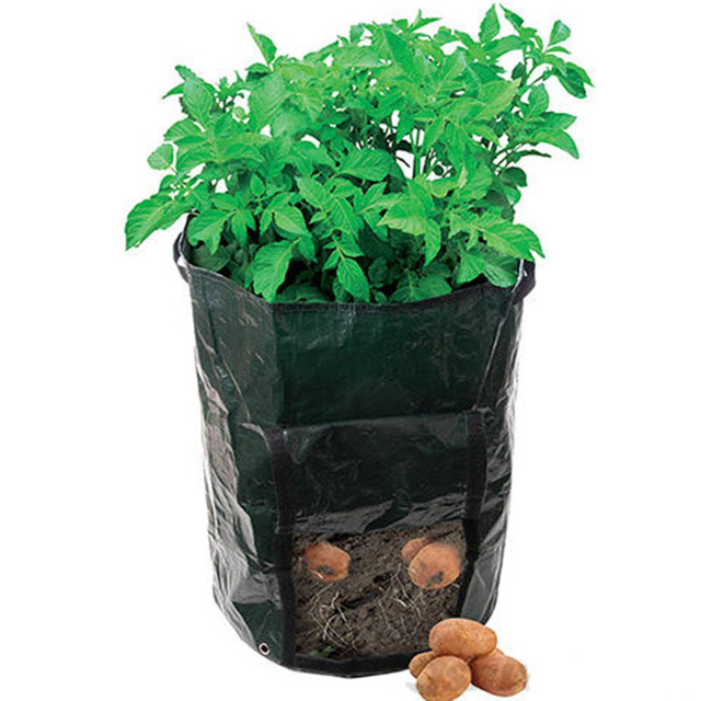 Us 1999 Pomidory Ziemniaki Torby Sadzenia Roślin Garnki Warzywa Balkon Plastikowe Doniczki Roślin W Pomidory Ziemniaki Torby Sadzenia Roślin Garnki