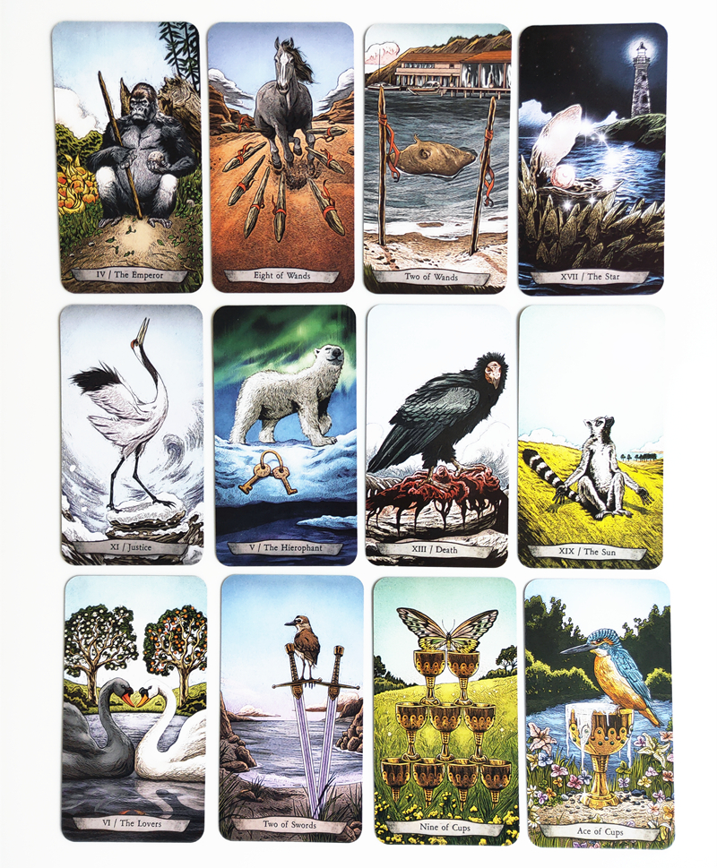 New Animal Totem Tarot Cards Funny Board Game Tarot Deck Card Games family games 78 pcs/set image
