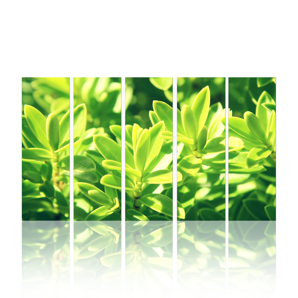 FREE SHIPPING Green Plants Natural Scenery Oil Painting(Unframed)20x60x5pcs