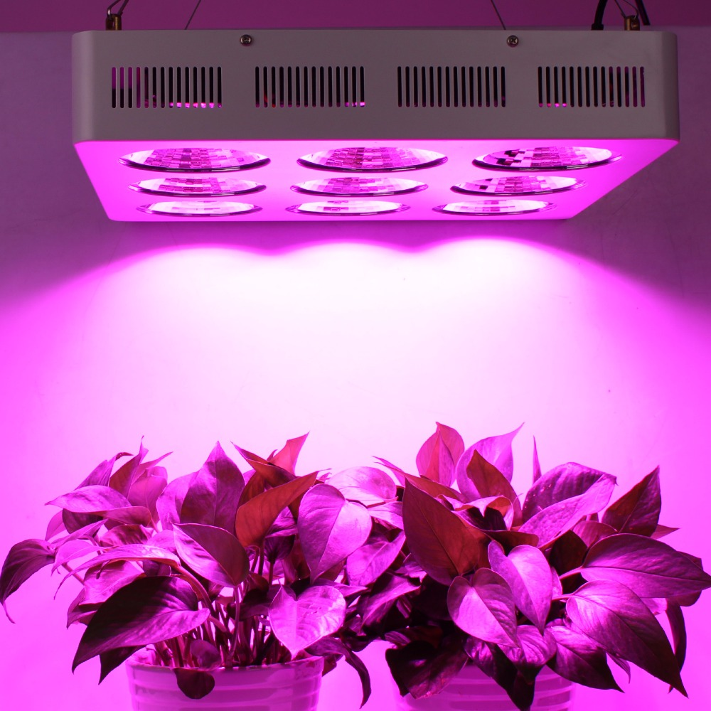 populargrow Professional Factory Direct Sale Most Powerful 1800w COB - Professional Light