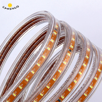 DHL 30/40/50/100M SMD 3014 Led Strip AC220V 120leds/M IP67 Waterproof Outdoor Garden Ceiling Tape Rope Light White/Warm White