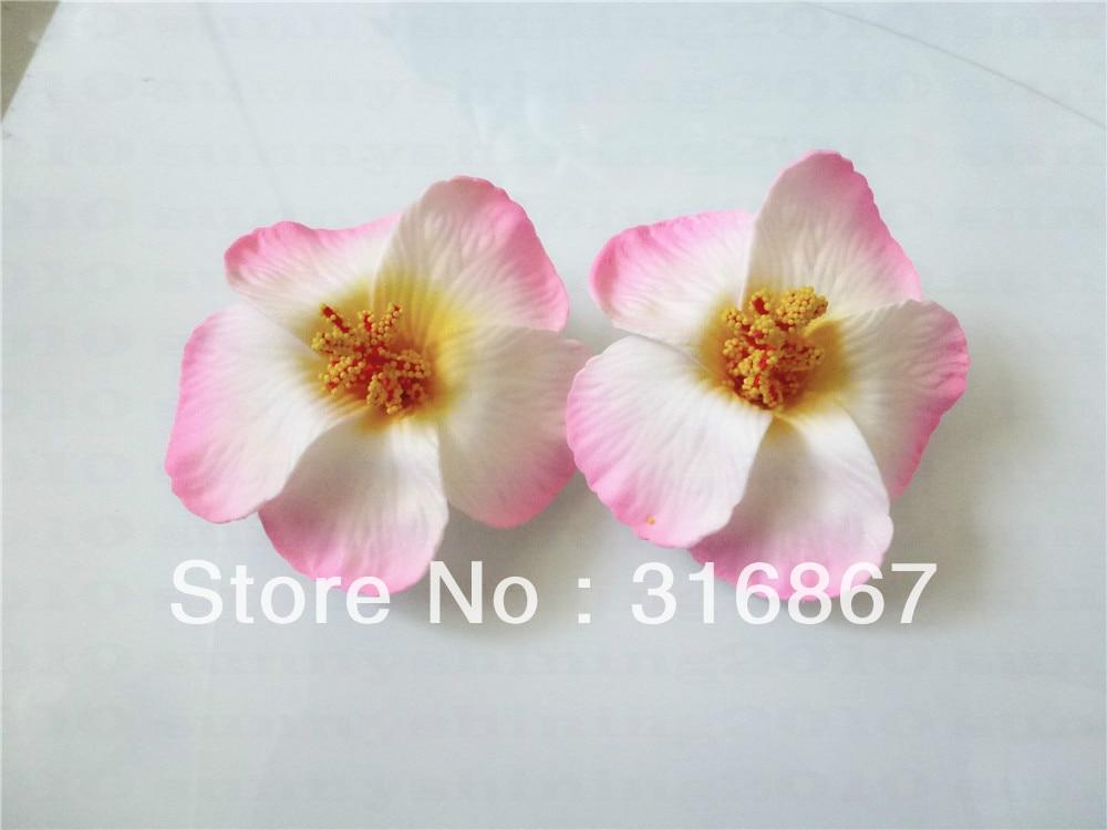 pink hawaiian flowers  flower, Beautiful flower