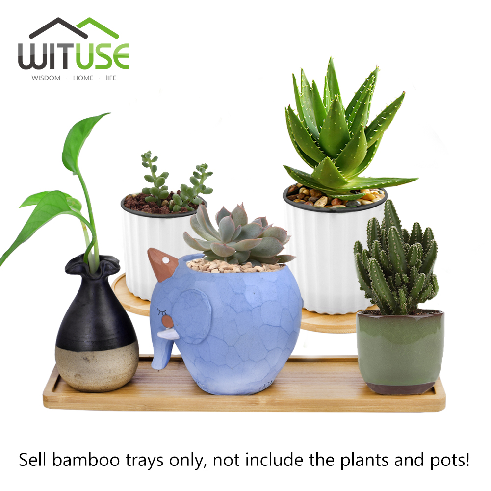 Image 3 - 2PCS/Lot Concise Style Flower Boxes Saucer Ceramic Succulent Plant Pots Bamboo Stand-in Pot Trays from Home & Garden