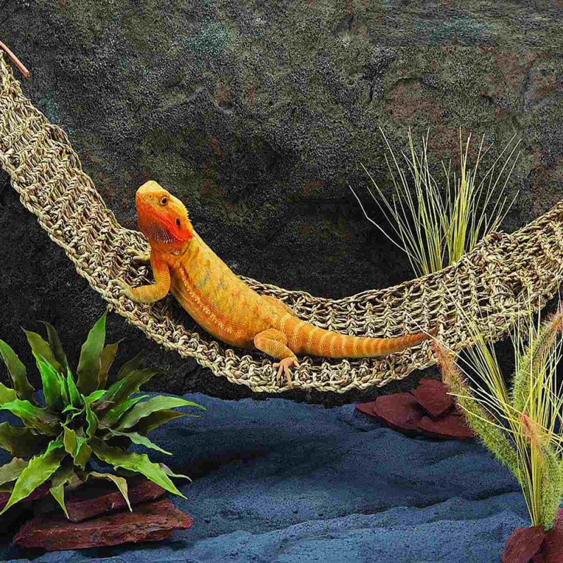 Lizard Hammock Swing Pet Cat Lounger Reptile Toy Hanging Seaweed Bed Mat Rat Small Hermit Crabs Geckos Reptile Accessories