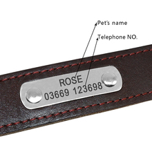 Leather Adjustable Dog's ID Collar
