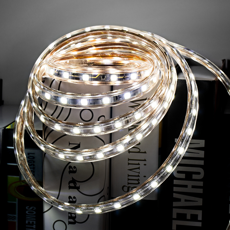 LED SMD5050 Strip 2M 3M 4M 5M 10M 220V IP65 Waterproof 60LEDs/m High Brightness Outdoor Lighting For Festival Decoration EU Plug