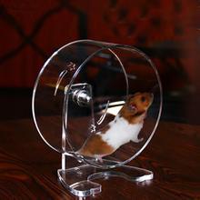 Новое прозрачное акриловое колесо для хомяка, беговая дорожка, большое колесо для бега белки, шиншиллы, колесо для бега маленького питомца, Ежика