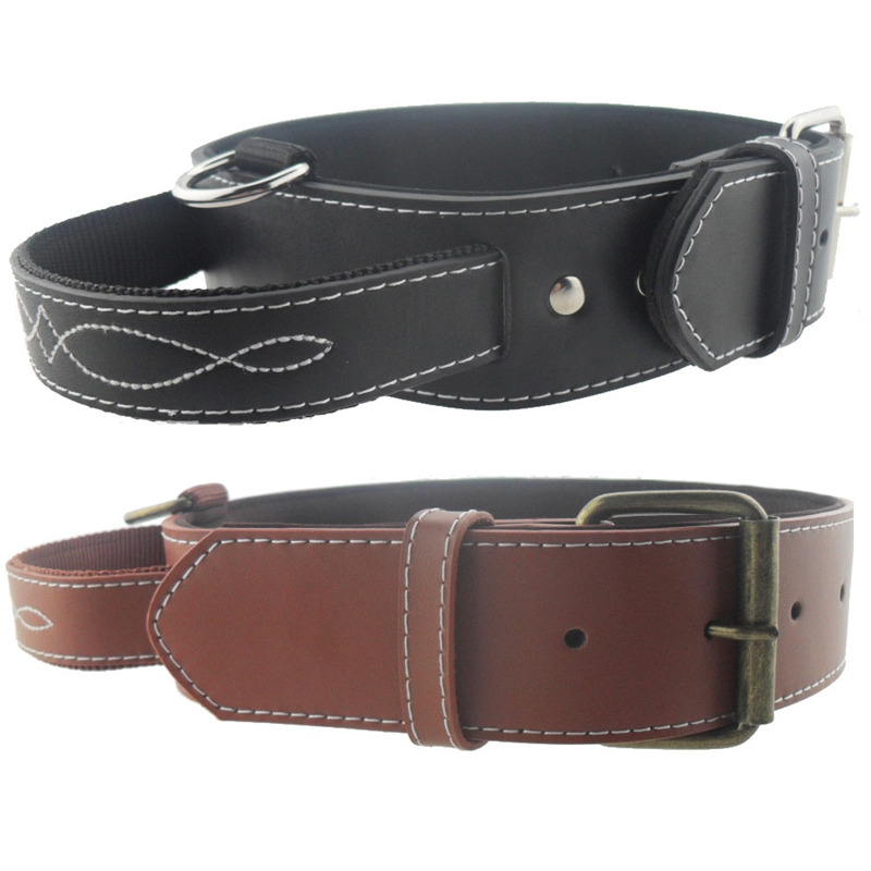 Training Collars For Large Dogs Reviews