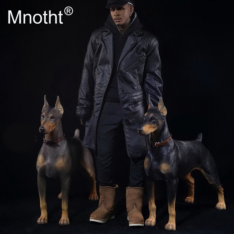 mnotht 1 6 scale doberman pinscher model collections toys resin animal dog model for 12in action figure accessories toys