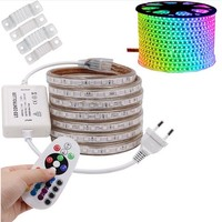 RGB LED Strip Flexible Lights SMD5050 Waterproof AC220V 230V 110V Neon Light Remote Control Party Living Room Home Decor DIY LED