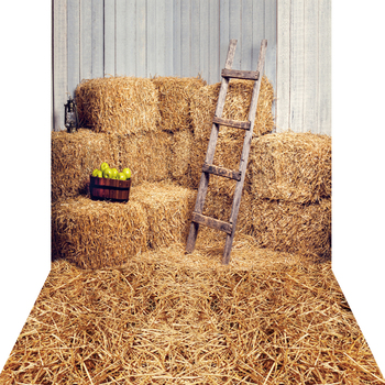 1.5x3m Canvas Haystack Backdrop Photography Backdrop For Children photo prop KP-006